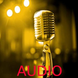 Audio - Usato